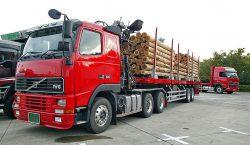 Ciężarówka z naczepą typu flatbed przystosowaną do przewozu drewna.